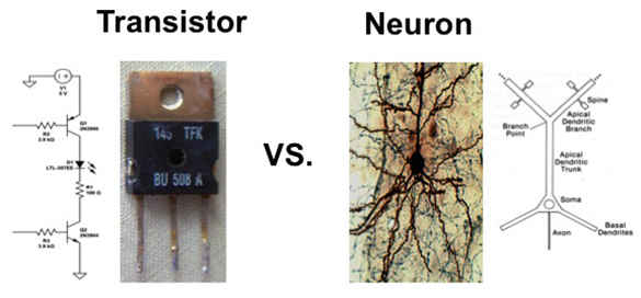 585-transistor.jpg.cdfe1ef6df24d44deac17fc6022574dc.jpg